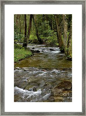 Monongahela National Forest Framed Print by Thomas R Fletcher