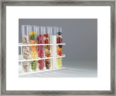 Balanced Diet Framed Print by Tek Image