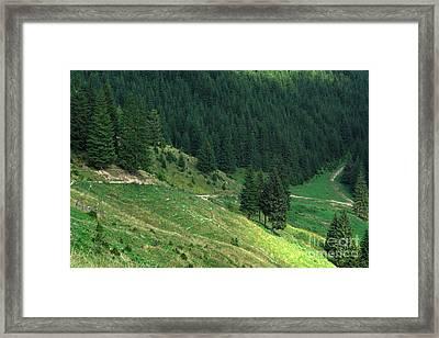 Landscape Framed Print by Odon Czintos