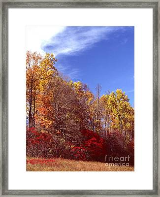 Patoka Lake - Indiana Framed Print by Jack R Brock