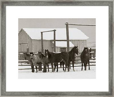 71 Ranch Framed Print by Diane Bohna