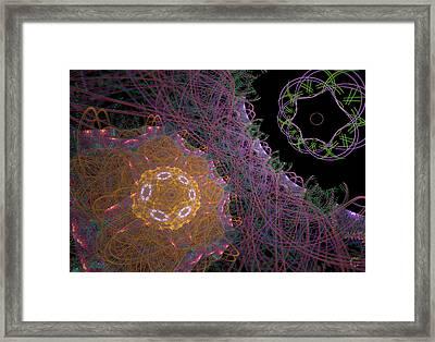762 Framed Print by Lar Matre