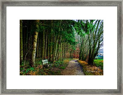 A Beautiful Memory Framed Print by Syed Aqueel