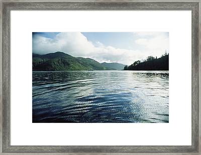 A Boat Plies The Gentle Waters Framed Print by Bill Curtsinger