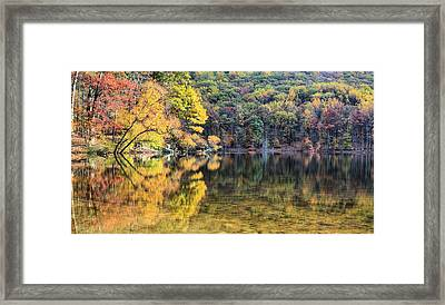 A Bright Spot Framed Print by JC Findley