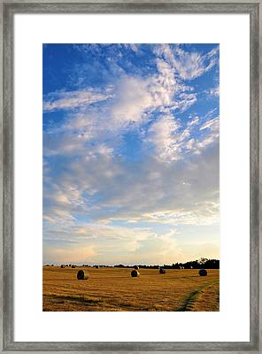 A Cause For Sunshine Framed Print by Jan Amiss Photography