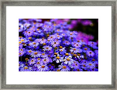 A Chain Reaction Framed Print by Syed Aqueel