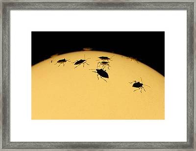 A Corner Of The Earth Framed Print by Nina Mirhabibi