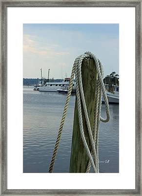 A Day At The Marina Framed Print by Suzanne Gaff