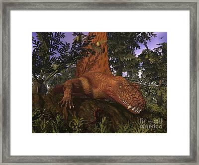 A Dimetrodon Amongst Alethopteris Ferns Framed Print by Walter Myers