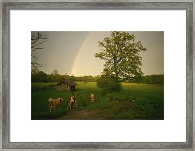 A Double Rainbow Arcs Over A Field Framed Print by Carsten Peter