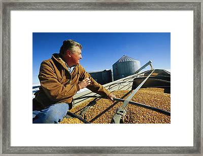 A Farmer Watches As His Corn Is Augered Framed Print by Joel Sartore