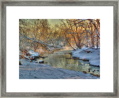 A February Face Framed Print by William Fields