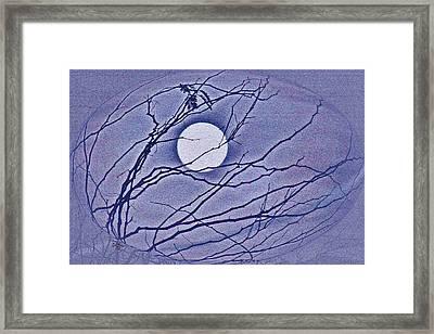 A Las Vegas January Full Moon Framed Print by Carl Deaville