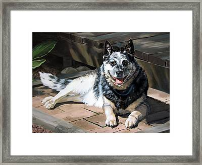 A Man's Best Friend Framed Print by Sandra Chase