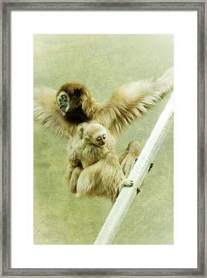 A Mother's Love Framed Print by Trish Tritz