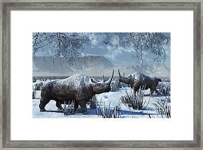 A Pair Of Woolly Rhinoceros In A Severe Framed Print by Mark Stevenson