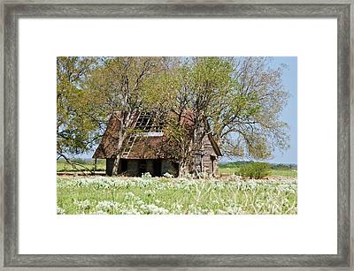 A Place Called Home Framed Print by Lisa Moore