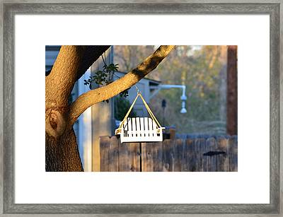 A Place To Perch Framed Print by Nikki Marie Smith