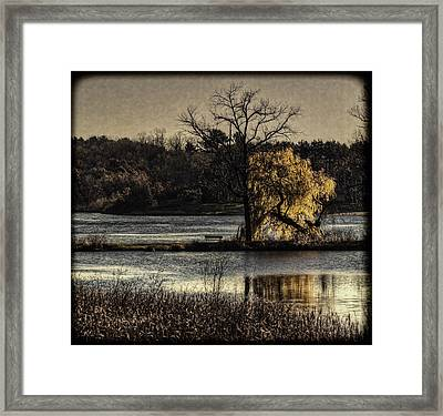 A Place To Think Framed Print by Thomas Young