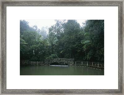 A Rainstorm In El Yunque, Puerto Rico Framed Print by Taylor S. Kennedy