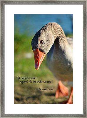 A Righteous Man Framed Print by J L