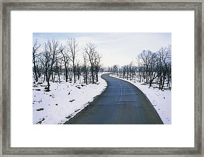 A Road Winds Through A Fire-damaged Framed Print by Rich Reid