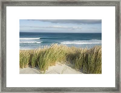 A Scenic Hillside Of The Beach Framed Print by Bill Hatcher