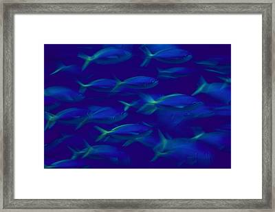 A School Of Fusilier Fish, Caesio Teres Framed Print by Bill Curtsinger