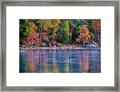 A Second Spring Framed Print by Mitch Cat