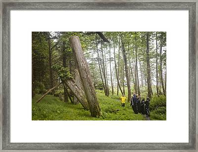 A Small Group Of People Look Framed Print by Taylor S. Kennedy