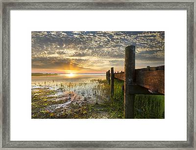 A Special Day Framed Print by Debra and Dave Vanderlaan