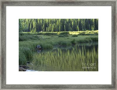 A Study In Green Framed Print by David Bearden