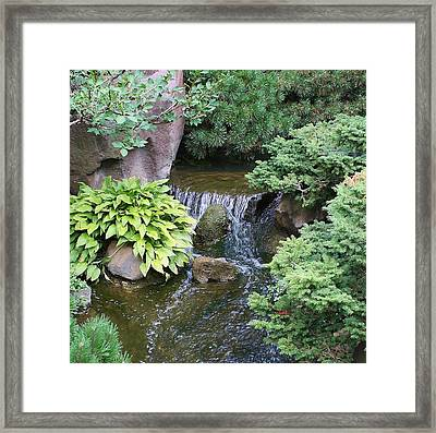 A Time To Reflect Framed Print by Bruce Bley