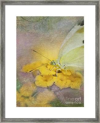 A Touch Of Yellow Framed Print by Betty LaRue