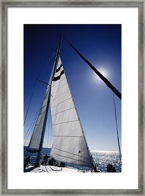 A Tourist Catamaran On Shark Bay Framed Print by Jason Edwards