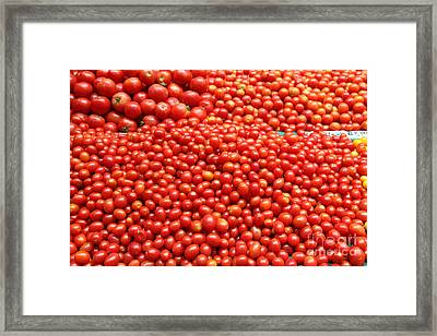A Variety Of Fresh Tomatoes - 5d17833 Framed Print by Wingsdomain Art and Photography