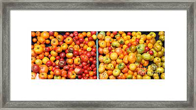 A Variety Of Fresh Tomatoes - 5d17904-long Framed Print by Wingsdomain Art and Photography