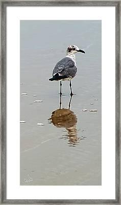 A Walk On The Beach Framed Print by Michael Flood