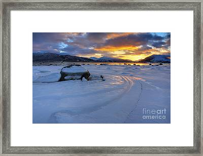 A Winter Sunset Over Tjeldsundet Framed Print by Arild Heitmann