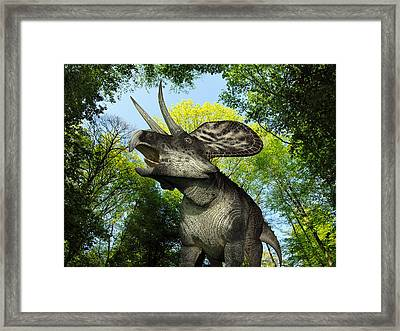 A Zuniceratops Wanders A Cretaceous Framed Print by Walter Myers