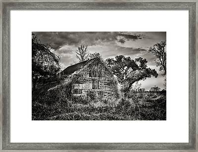 Abandoned Barn 2 Framed Print by Brenda Bryant