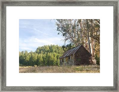 Abandoned Rustic Cabin Framed Print by Matt Tilghman