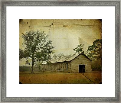 Abandoned Tobacco Barn Framed Print by Carla Parris