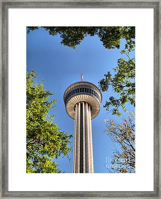 Above The Trees Framed Print by Arthur Herold Jr