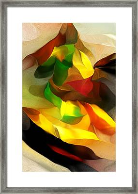 Abstract 080512 Framed Print by David Lane