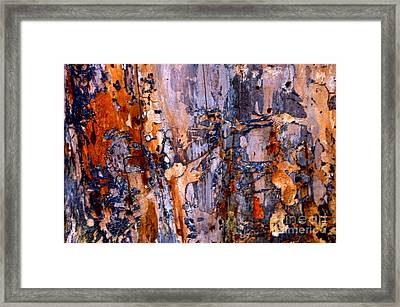 Abstract By Nature Framed Print by Anca Jugarean
