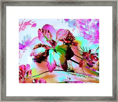 Abstract Flower Number Five Framed Print by Doris Wood