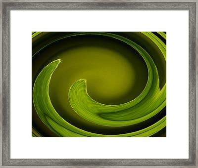Abstract Helecho  Framed Print by Melanie Moraga