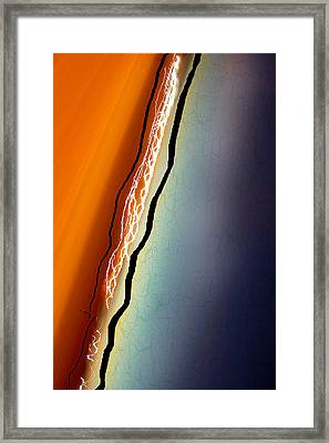 Abstract Streak Of Nature Framed Print by Elaine Plesser